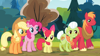 The Apples and Pinkie looking at Goldie S4E09