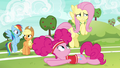 """Applejack """"what in the apple happened"""" S6E18.png"""