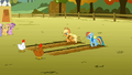 Applejack and Rainbow Dash start to race S1E13.png