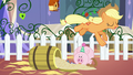 Applejack jumps from the barrel S5E3.png