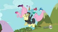 Birds lift Fluttershy to take her to Zecora's place S3E05