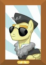 Commander Easyglider ID Wonderbolts Academy Handbook