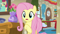 """Fluttershy """"don't you remember last time?"""" S6E11.png"""