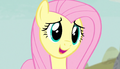 "Fluttershy ""maybe they miss them a little"" S5E1.png"