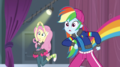 Fluttershy and Rainbow Dash look surprised EGS1.png
