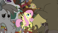 Fluttershy and scared bear S4E1
