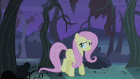 Fluttershy walking alone S4E07