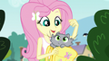 Kitty pops out of Fluttershy's backpack EG3.png