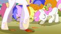 Ponies kneeling before Celestia S1E13.png