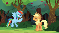 Rainbow Dash --I could beat the whole town-- S6E18