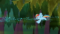 Rainbow Dash flying over the swamp S8E17
