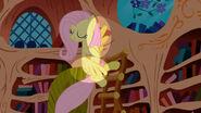 S01E03-error Fluttershy Alas