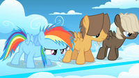 S01E23 RainbowDash ReadyToRace