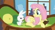 S05E23 Świecący znaczek Fluttershy