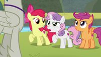 "Sweetie Belle ""you have a problem?!"" S8E6"