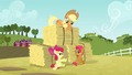 Apple Bloom 'We were so busy with that obstacle course' S3E08.png