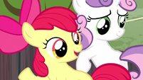 Apple Bloom -now's your chance- S5E6