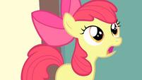 Apple Bloom explains to Rainbow Dash S4E05