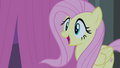 Fluttershy happy S4E14.png