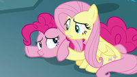 Fluttershy helping Pinkie Pie up S8E25