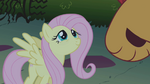 Fluttershy looking kindly at manticore S1E02