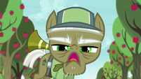 Pest pony -if you want to learn anything- S5E04