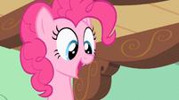 Pinkie Pie they like it! S2E13