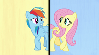 Rainbow and Fluttershy in a split-screen S7E14