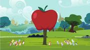 S04E15 Ogromne jabłkowe drzewo