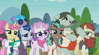 Season 8 promo image - Crowd of background ponies