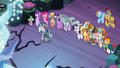 Star Swirl approaching the Tree of Harmony S7E26.png