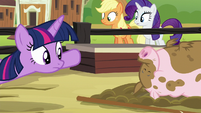 Twilight looking at an unfazed pig S6E10