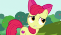 """Apple Bloom """"even if our carts aren't exactly"""" S6E14.png"""
