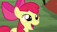 "Apple Bloom ""we should do the annual"" S7E16"