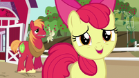 Apple Bloom -you are the most awesome sister ever!- S5E17