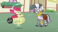 Apple Bloom about to run away S2E06