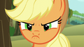 Applejack's scowl close-up S6E6.png