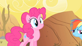 BewilderedPinkie S01E21.png
