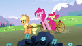 Pinkie Pie 'Hey Applejack' S3E3.png
