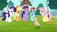 "Rainbow ""talking about the same thing"" S8E18"