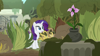 Rarity finds Mistmane's flower S7E25