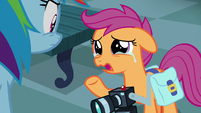 "Scootaloo ""hoping to learn more about you"" S7E7"