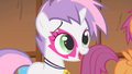 Sweetie Belle saying they were trying too hard S1E18.png
