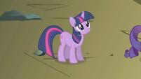 Twilight looks up at Rainbow Dash S1E07