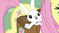 Angel Bunny poking Fluttershy S9E18