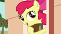 """Apple Bloom """"one jewel might be able to cover it all"""" S03E11.png"""