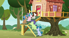 Apple Bloom sees line of foals outside the clubhouse S7E21
