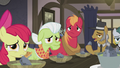 Apple family staring at Applejack S5E20.png