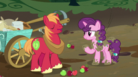 Big McIntosh agreeing with Sugar Belle S8E10