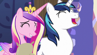 Cadance and Shining Armor laugh at Twilight MLPBGE
